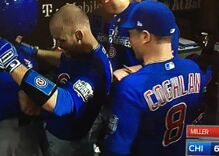Why did the Cubs celebrate last night's win by bumping their dingles together?