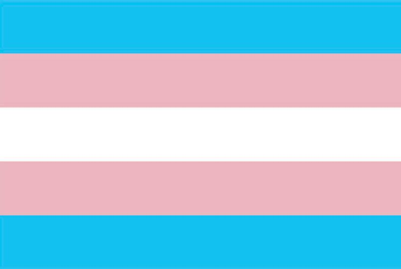 Show us how visible you are on this Transgender Day of Visibility