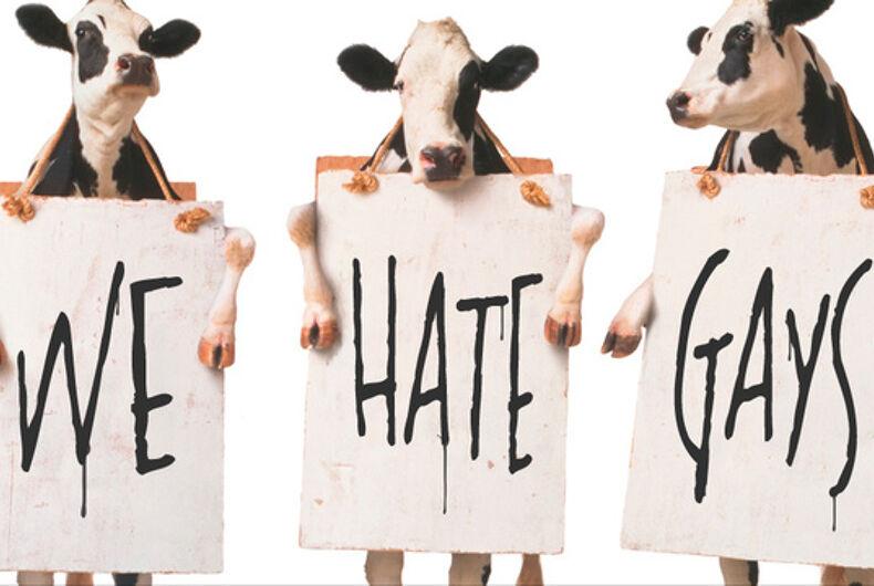 Rustled: Someone stole Chick-fil-A's mascot cows