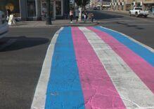 Transgender crosswalk hits the streets of Calgary for pride