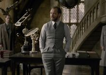Jude Law says upcoming 'Fantastic Beasts' films will be gayer