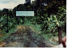 Jonestown cult leader Jim Jones was bisexual & friends with Harvey Milk