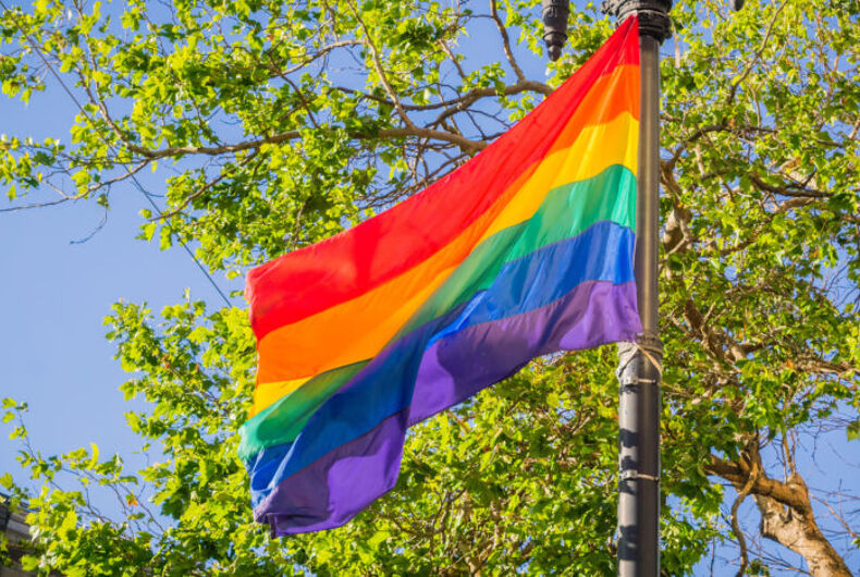 A rainbow flag in front of some trees