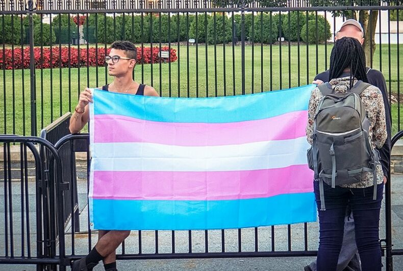 The transgender flag held up by several people