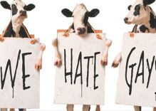 Chick-fil-A is the #3 fast-food chain in America. Has homophobia paid off?
