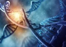 New landmark study finds that genetics influences sexual orientation