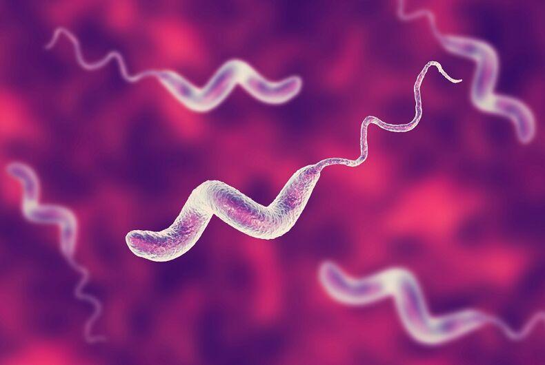 A 3D illustration of Campylobacter bacteria