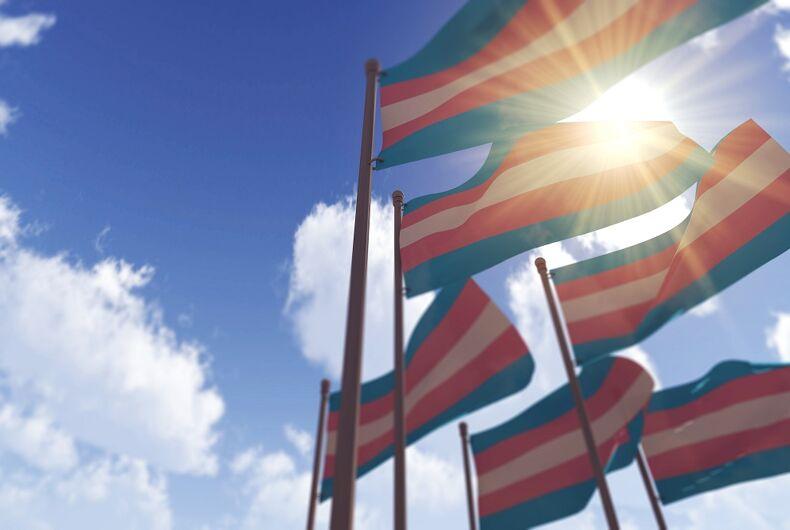 Transgender flags