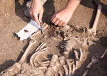 Archaeologists may have found the remains of a trans man in a Byzantine chapel