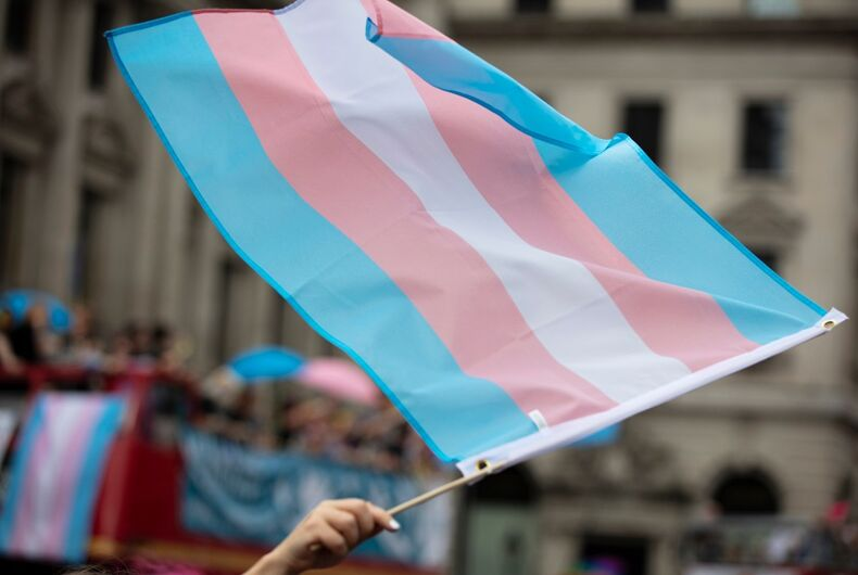 Transgender flag being waved in a crowd