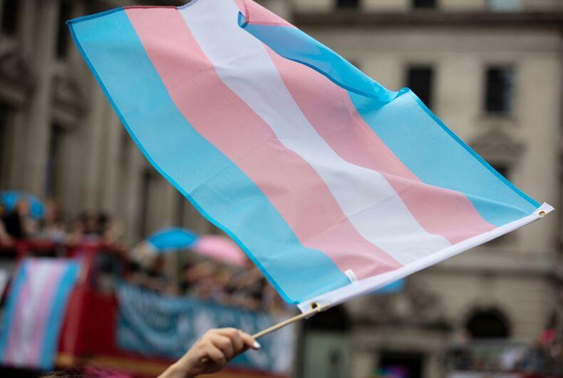 Transgender flag being waved in a crowd