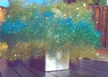 Glitter-bomber booby traps packages to give thieves what they deserve