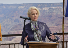Republicans condemn Cindy McCain for supporting LGBTQ people. She couldn't be happier.