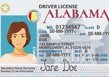 Federal court nixes Alabama's ban on trans people correcting driver licenses without surgery