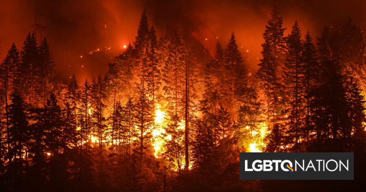 Gender reveal party results in wildfire. The family that started it got off with a $500 fine.